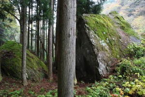 S8 夫婦岩1 パネル用 IMG_2140
