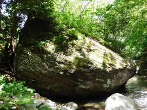 6-5 奇岩群4DSCF1747_R